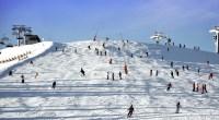 Crowded-Ski-Slope