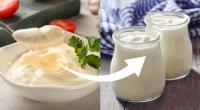 Bowl-Full-Of-Mayonnaise-Tiny-Cups-Of-Yogurt