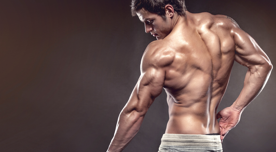 Muscular fitness model and bodybuilder posing and showing his triceps muscles