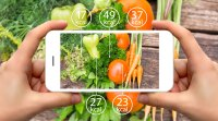 Person-Taking-Photo-Of-Vegetables-On-Iphone-With-Calories-Display