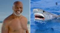 Mike Tyson - Shark Week