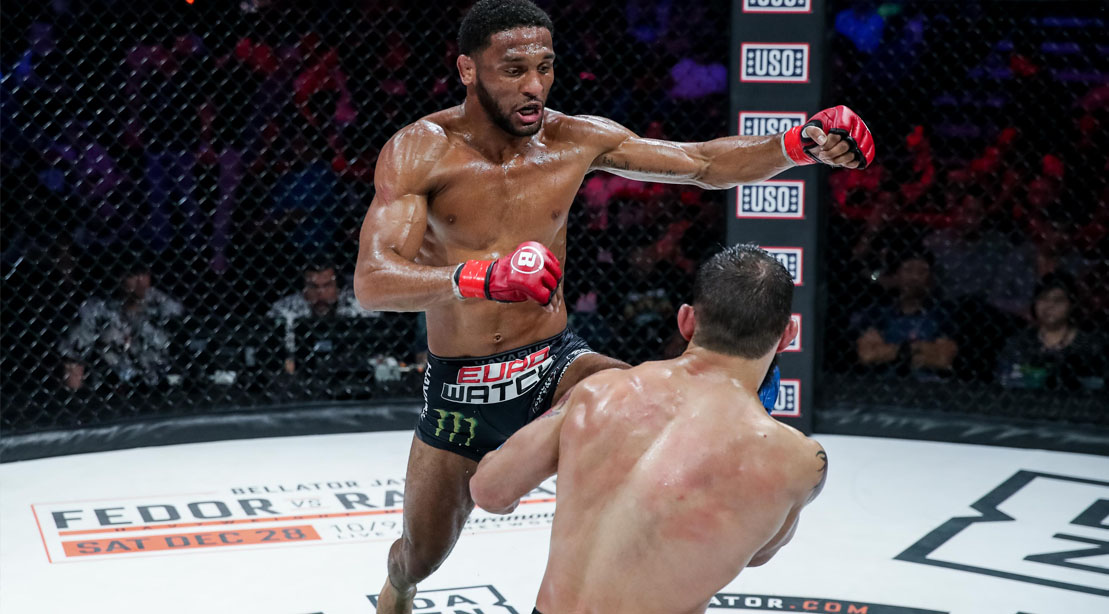 Bellator fighter and MMA fighter AJ McKee fighting in the octagon
